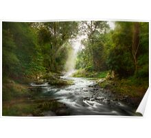 Rainforest River Retreat Poster