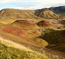 the Painted Hills by Chaney Swiney
