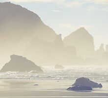the Oregon Coast by Chaney Swiney