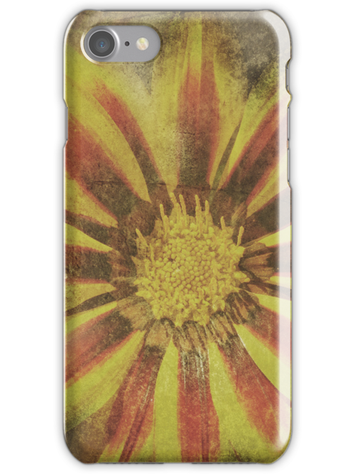 Sweet Summer iPhone Case by Denise Abé