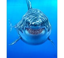 Great White Photographic Print