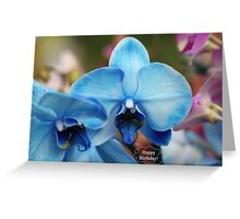Happy Birthday Greeting Card 7053 Greeting Card