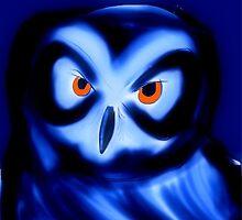 owl by Francis Gallinagh