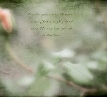 Curvy Rose by JulieLegg