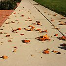 Orange Leaf Road by Pbratt79