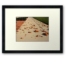Orange Leaf Road Framed Print