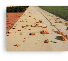 Orange Leaf Road Metal Print
