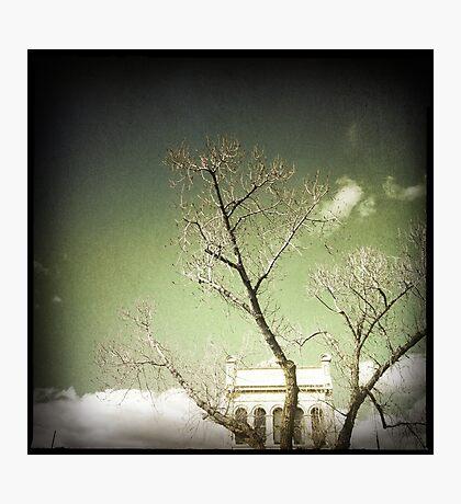 Carlton. Photographic Print