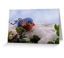Berry Treat Greeting Card