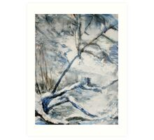Another Winter Falls Into Spring Art Print