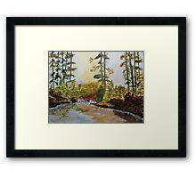 Back Forty Pond Framed Print