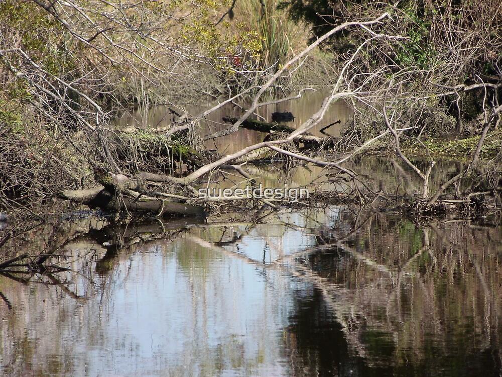 swampy by sweetdesign