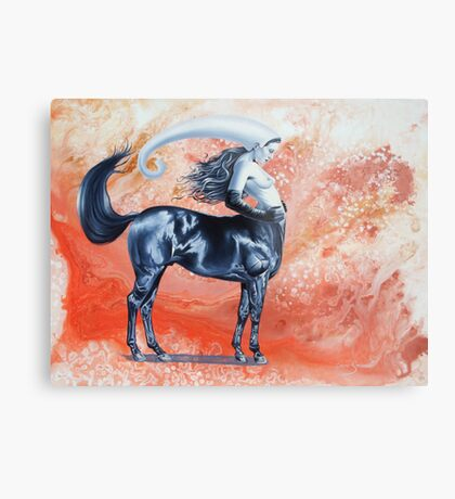 Equine attitude Metal Print