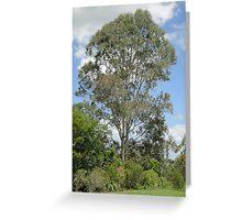 Trees at Seventeen Mile Rocks Greeting Card