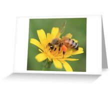 Bee and Yellow Flower Greeting Card