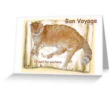 Bon Voyage Card - Cat Stays Home Greeting Card