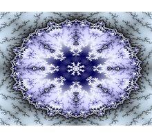 Mid-winter Photographic Print