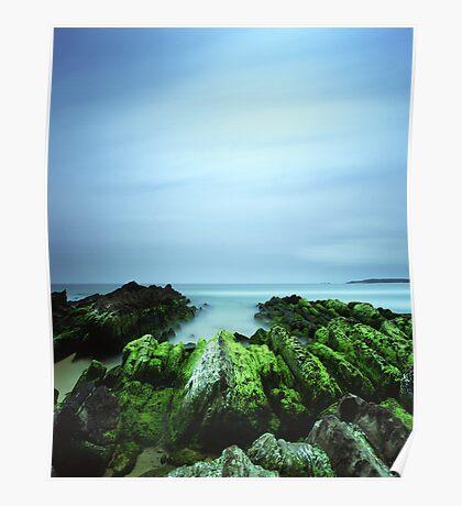 """Beachular Mosstrophy"" ∞ Barragga Bay, NSW - Australia Poster"