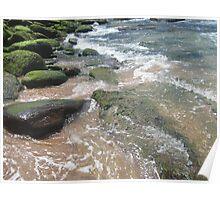 Mossy Beach Rocks Poster