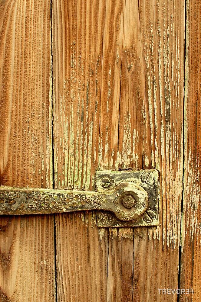 The Door Catch by TREVOR34