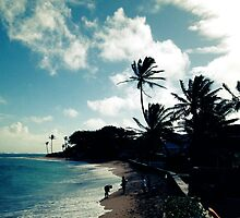 Hau'ula Beach by integralapparel