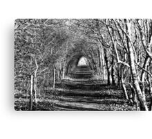 The Footpath Canvas Print