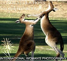 My Banner for International Woman's Photography Challenge Photographic Print