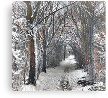 A Winters walk Canvas Print