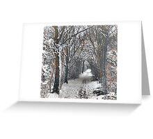 A Winters walk Greeting Card