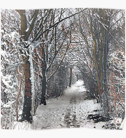 A Winters walk Poster