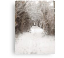 Enchanted winter  Canvas Print