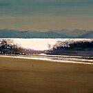 Llanbedrog beach by doodledesign