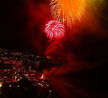 Happy New Year From Puerto Vallarta - Feliz Año Nuevo Desde Puerto Vallarta by Bernhard Matejka