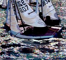 Cadet Dinghies Racing by doodledesign