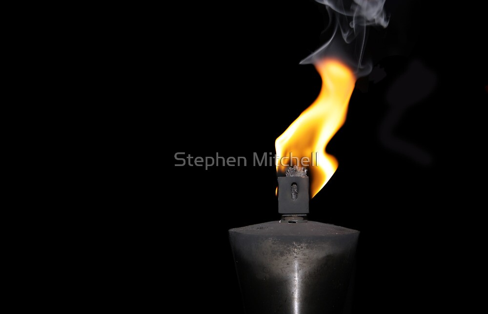 Fire by Stephen Mitchell