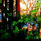 Evening Sun 1 by doodledesign