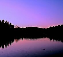 Bright Sunset At Shearwater by Lauren Tucker