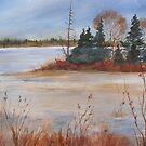 Island Lake, Orangeville, Ontario, Canada by bevmorgan