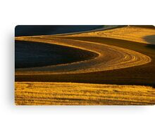 Patterns of Gold Canvas Print