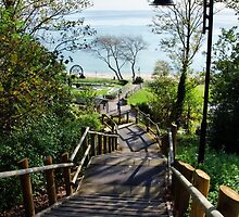 Steps Down To The Sea ~ Lyme Regis by Susie Peek