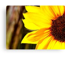 Mini Sunflower Canvas Print