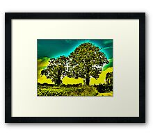 HDR Trees Framed Print