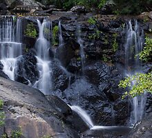 Waterfall at Surprise Creek Cairns QLD by Steve Bass