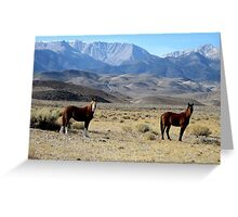 White Mountains Our Home Greeting Card