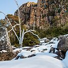 Organ Pipes on Mt Wellington #3 by Chris Cobern
