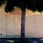 Dreamy Urban Tree and Fence  by Jane Underwood