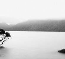 Zen by Stephen Maw