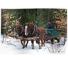 Horse Drawn Wagon Ride in the Snow Poster
