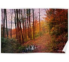 Somewhere in Time ~ A Logging Trail Poster