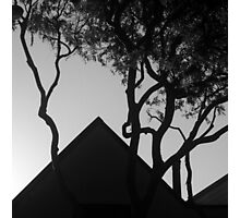 Rooftop Silhouettes Photographic Print